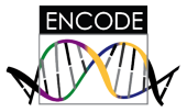 ENCODE Project at NHGRI